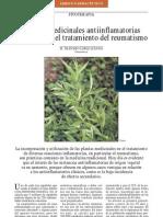 Plantas medicinales para el tratamiento del reumatismo