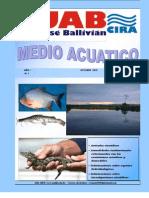 Revista Medio Acuatico Nº 1