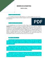 MINERÍA EN ARGENTINA. MARCO LEGAL