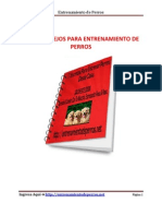 7_Secretos_EntrenamientodePerros