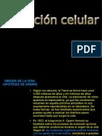 evolucincelular-090505141531-phpapp02