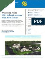 Westwind Professional Plaza Flyer