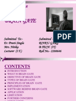 Seminar Brain Gate
