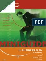 BusinessPlanMiniGuida