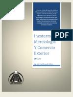 Comercio Internacional, Incoterms y Merciologia