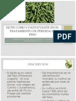 Phaseolus vulgaris EJOTE para pérdida de peso