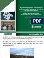 Proyecto Desarrollo rio Tortuga