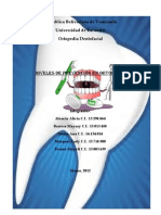 Niveles de Prevencion en ortodoncia