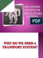 Circulatory System Plan