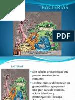 BACTERIAS Micro Equipo 2