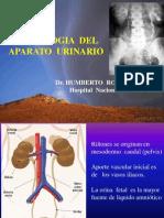 Urologia i at y Metodos de Imagen[1]