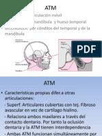 ATM 2006