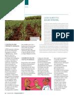 Revista Fapesp PDF