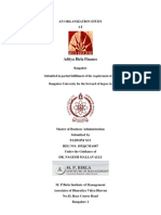 Padmini 10XQCMA067 AdityaBirlaFinance Internship Report