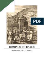 Domingo de Ramos-homilía-