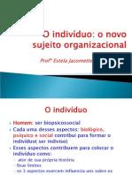 gp - Slides - O indivíduo o novo sujeito organizacional
