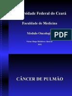 CA Pulmao Cuidados Paliativos 2012