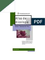 Atlas de Micologia - Gilson Tavares