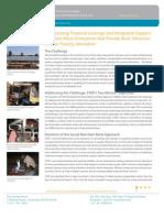 Revised Draft S3IDF Backgrounder Feb 2012