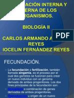 FECUNDACIÓN INTERNA Y EXTERNA DE LOS ORGANISMOS