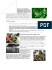 Mangrove Information
