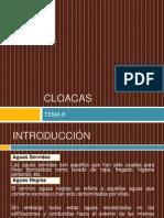 08. Cloacas