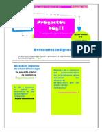 diario2.proyectos sociales.maya