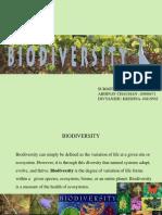 Abhinav & Divyanshu Biodiversity)