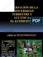 B Clase 3_Biodiversidad[1]