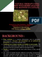 MSc Project Presentation 29 March