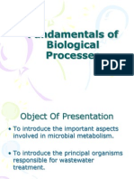 Fundamentals of Biological Processes
