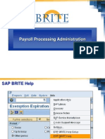 18322637 SAP Payroll Processing Administration