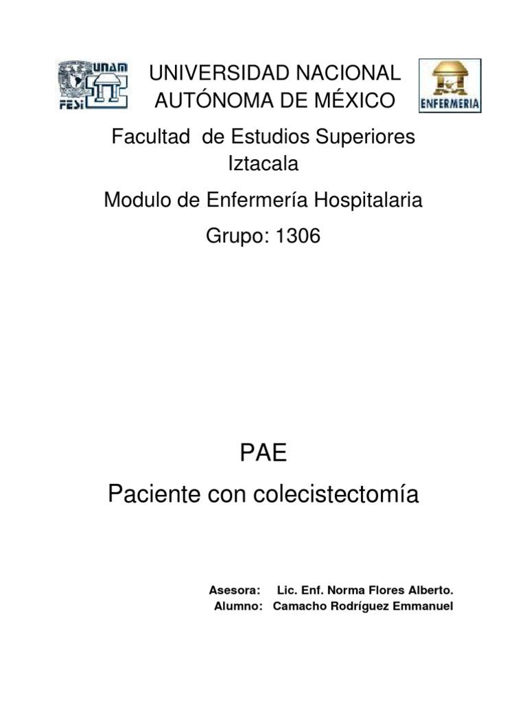 Perfecto Enfermera De Cuidado Agudo Reanudar Muestra De La Práctica ...