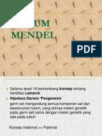Ppt Hukum Mendel