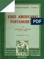 """""""Vides Americanas Portainjertos"""" de Antonio Larrea 1950"""