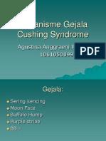 Mekanisme Gejala Cushing Syndrome