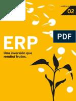 Aprendiendo ERP Cap2 Esp