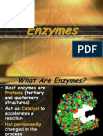 Enzyme Ppt