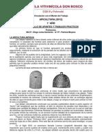 Apunte Apicultura 1° Año - 2012 - EVDB
