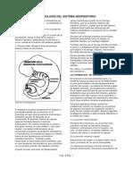 07 embriología general