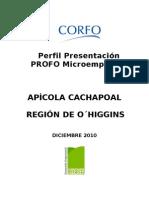 PROFO MICROEMPRESAS APÍCOLAS CACHAPOAL Preliminar (1)