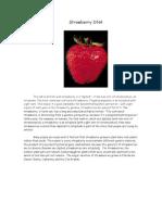 Strawberry DNA Lab Protocol.