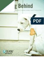 Falling Behind 2008 an International Comparison of Canadas Animal Cruelty Legislation