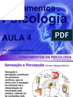 PSICOJURIDIC_AULA4