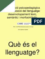 adquisició del llenguatge