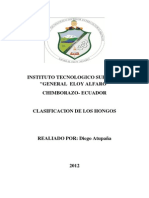 CLASIFACACION DELOS HONGOS