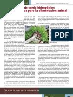 forraje-verde-hidroponico