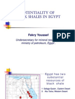Potentiality of Black Shales in Egypt