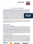 05915 Economic Growth Social Justice DMITopicguide2011FINAL