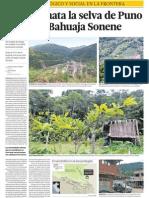 Daño a ecología en selva de Puno